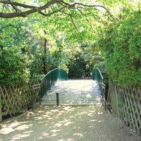 pont-riviere-lac-parc-borely
