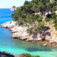 calanque-port-pin-plage.png