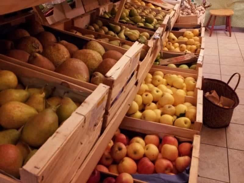 agriculture-local-saison-bio-provence