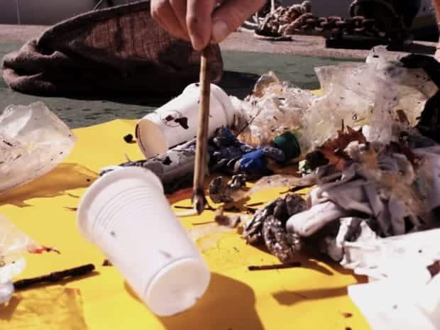 poubelle, Seabin Project – La poubelle qui nettoie la mer débarque à Marseille