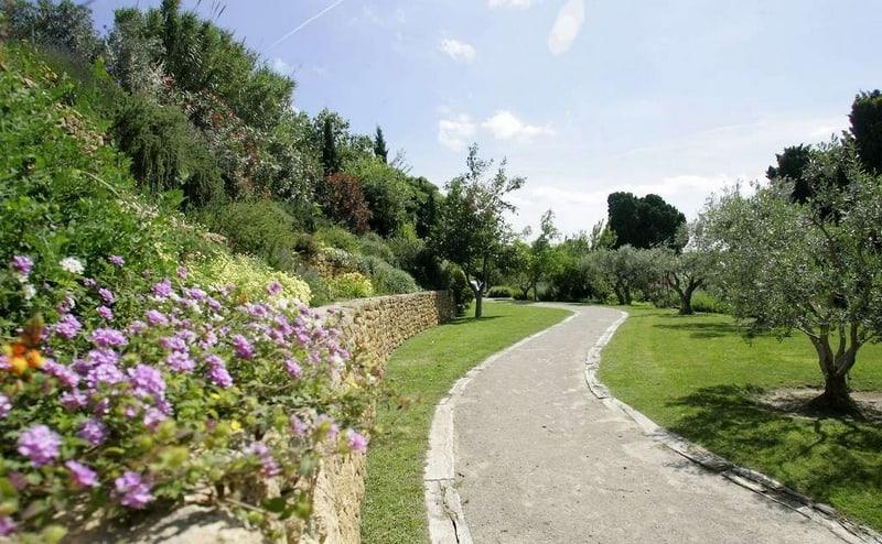 jardin-mediterraneen-flore-plante-fleur