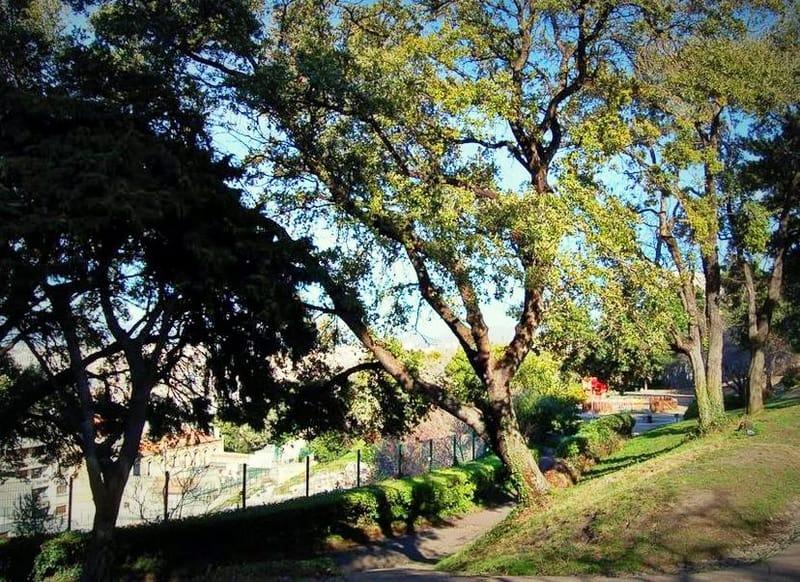 jardin-colline-puget-tourisme-marseille