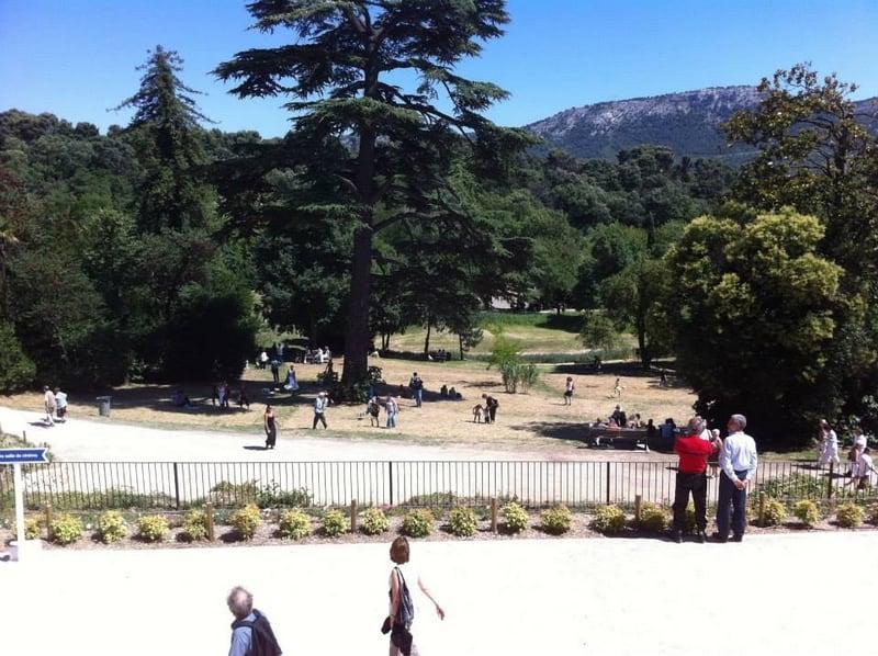 vue-parc-depuis-chateau-buzine