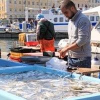 marche-poisson-vieux-port