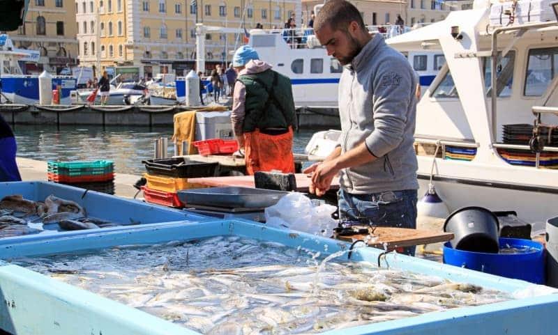 5 bons plans pour venir visiter marseille en solo made - Restaurant poisson marseille vieux port ...