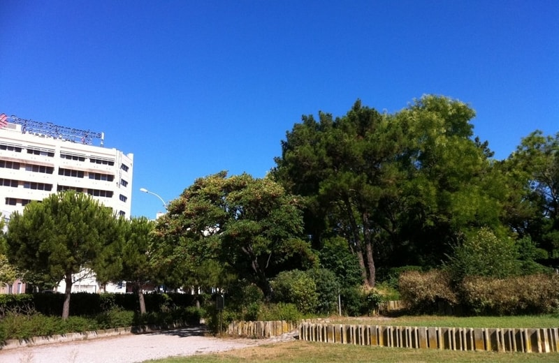 bonneveine, Découvrez le parc central de Bonneveine, en plein cœur du 8ème arrondissement, Made in Marseille