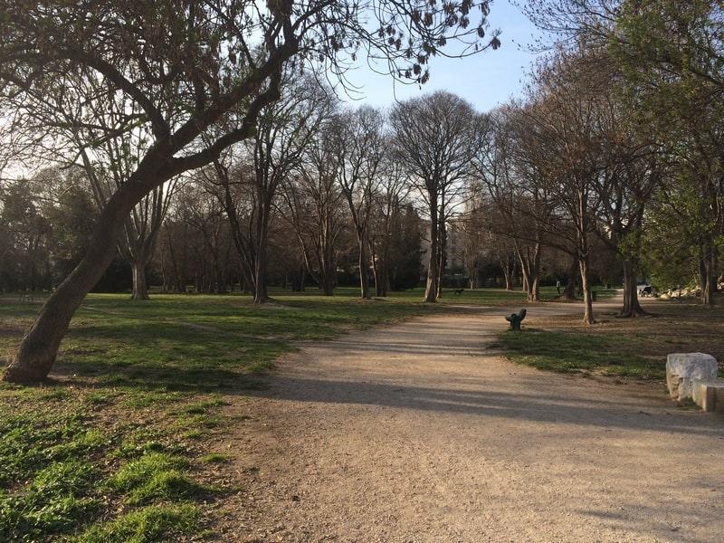 parc-henri-fabre-promener-chien