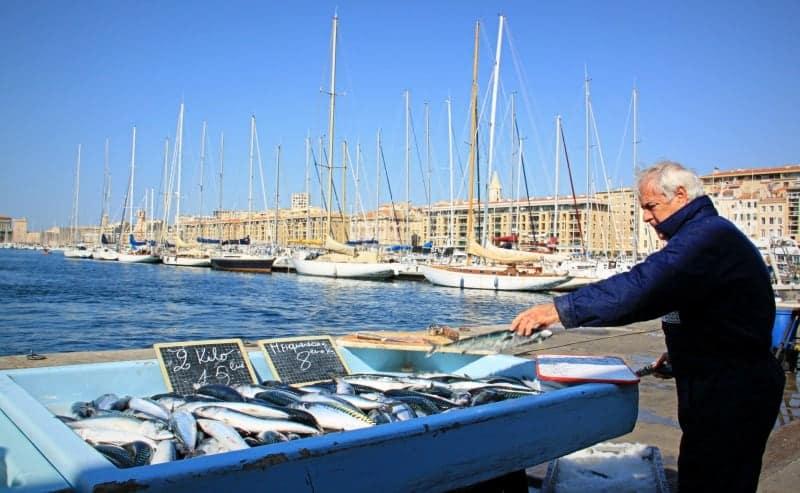 Balade sur le march aux poissons du vieux port made in - Restaurant poisson marseille vieux port ...