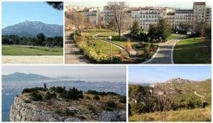 Où aller pour promener son chien à Marseille ?