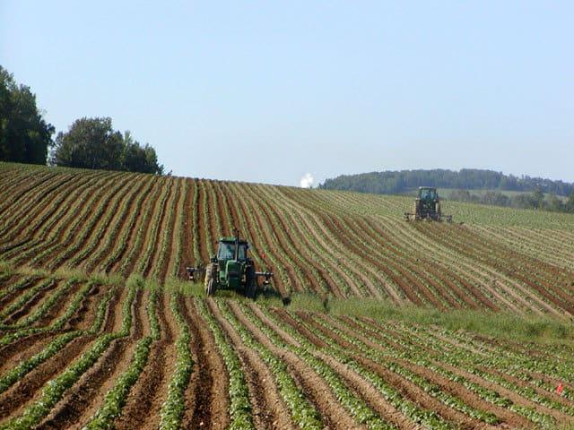 terre-agricole-bio-region-paca