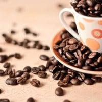 Saviez-vous que le premier café de France est né à Marseille ?