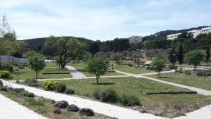 , Avec l'Hexagone, le coeur du campus de Luminy fait peau neuve, Made in Marseille