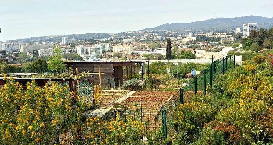 Marseille dans le top 3 des villes françaises en termes de jardins partagés!