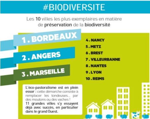 biodiversité, Marseille en 3e place des villes avec le plus de biodiversité en France !, Made in Marseille, Made in Marseille