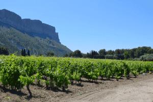 , Que faire pendant les vacances de la Toussaint en Provence ?, Made in Marseille