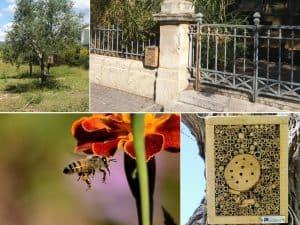 Des hôtels à insectes pour protéger la biodiversité dans les parcs urbains