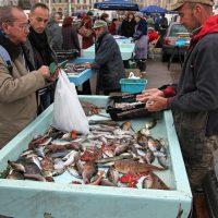 marche-poisson-roche-bouillabaisse