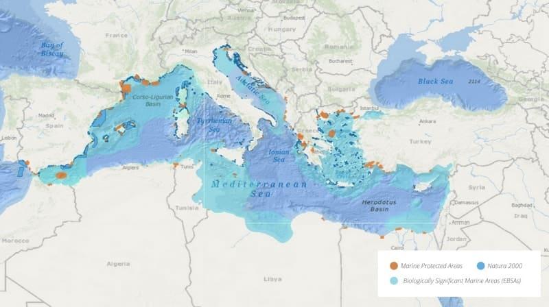 aire-marine-protegee-mer-mediterranee