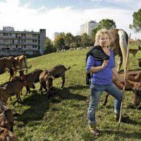 , Des mécènes se mobilisent pour développer l'agriculture urbaine et durable à Marseille
