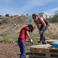 chantier-preparation-terrain-activite-dimanche