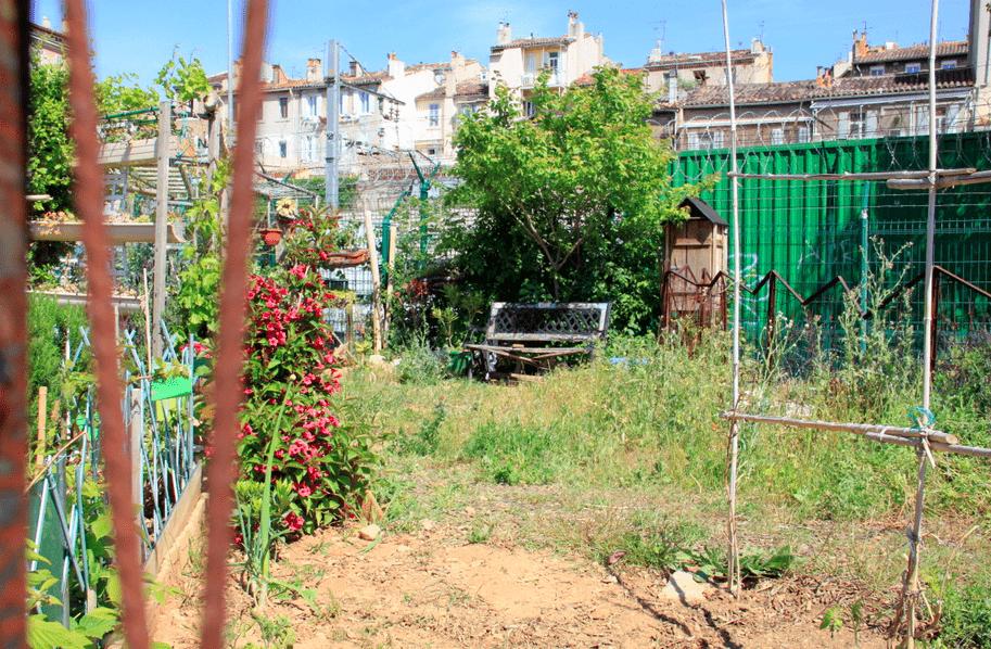 jardin-partage-friche-belle-mai