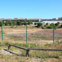 , Des ânes investissent le parc Foresta dans les quartiers Nord de Marseille