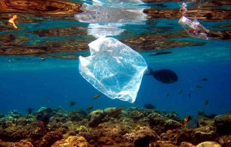 , Et si vous vous passiez de plastique pendant 15 jours ?