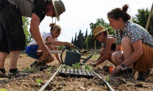 agriculture-quartier-nord-terre-de-mars