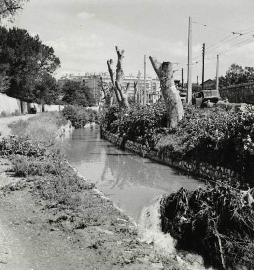 jarret-riviere-archive-avant-route