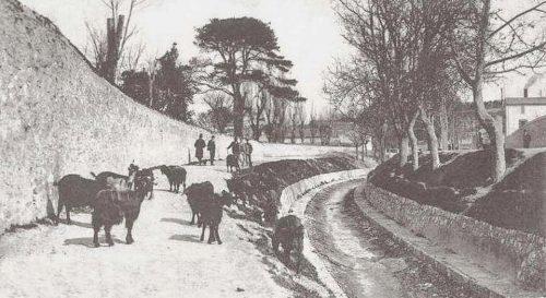rocade-jarret-riviere-boulevard-sakakini