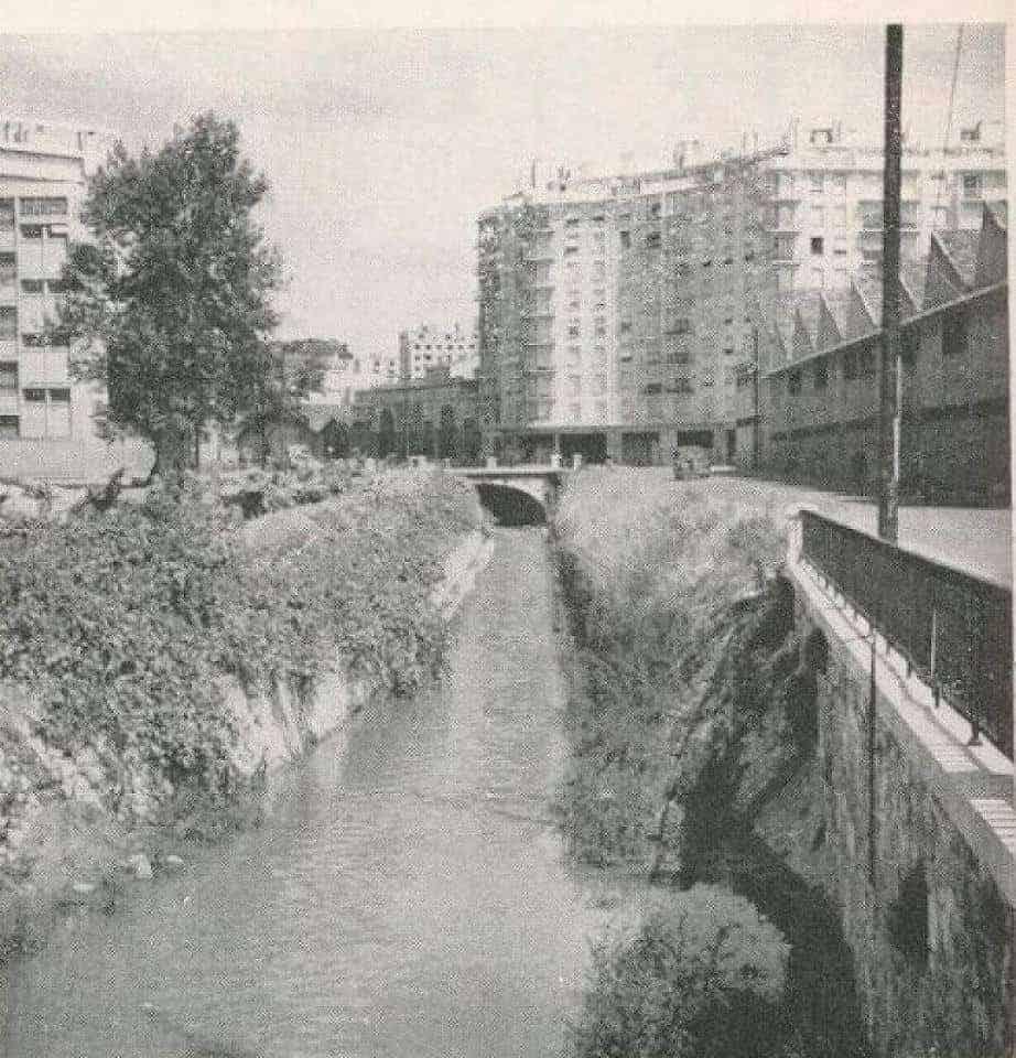 rocade-jarret-riviere-ruisseau-couvert