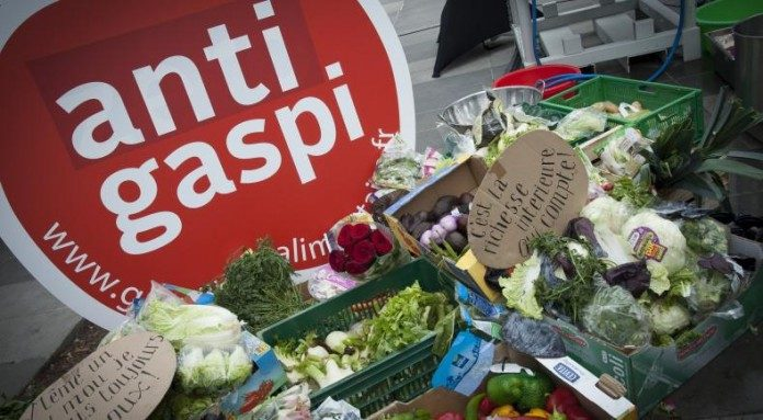 Grâce À L'Appli Anti Gaspi « Too Good To Go », 7 000 Repas Ont Été