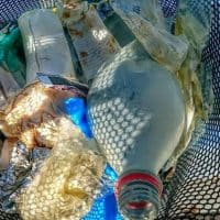 , Manu, l'homme qui nageait pour sauver la Méditerranée des déchets, se raconte…