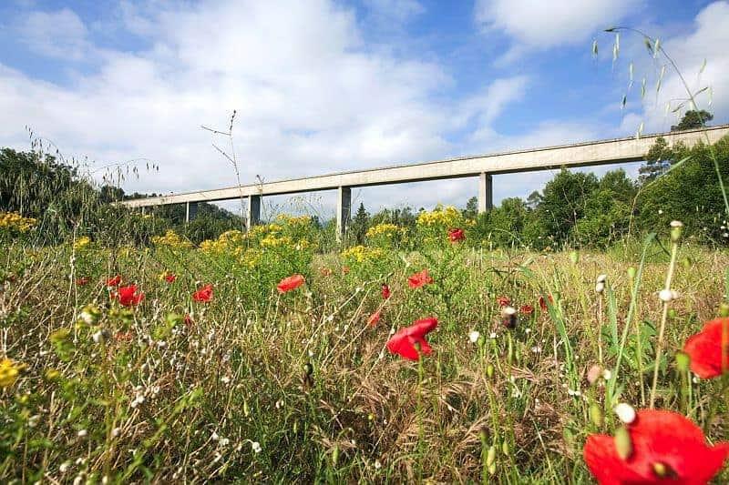 , L'histoire du canal de Provence qui a sauvé le territoire de la sécheresse, Made in Marseille, Made in Marseille