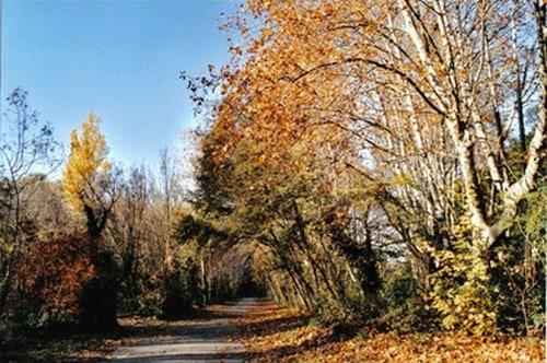chamas, Guide de Provence – Visitez Saint-Chamas, commune pittoresque du Nord de l'étang de Berre