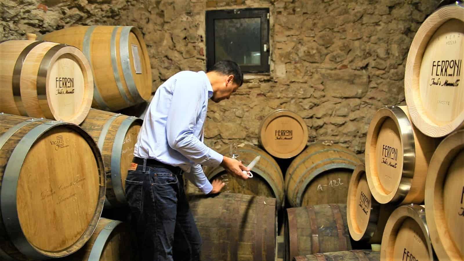 , Pastis et rhum – Découvrez les secrets de ces liqueurs traditionnelles marseillaises
