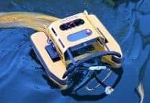 jellyfishbot vieux-port marseille