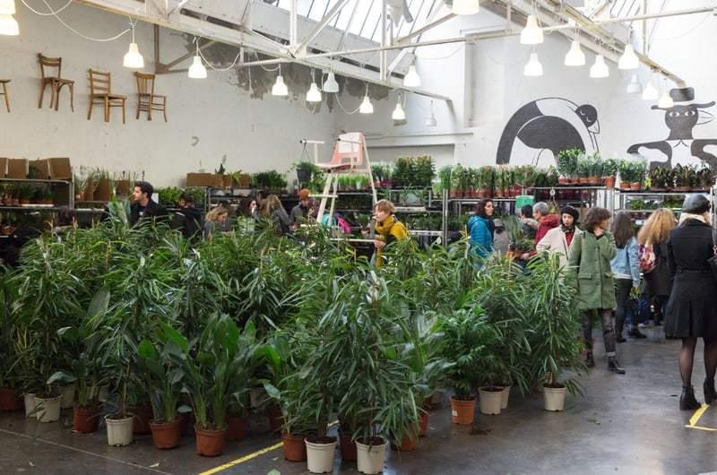 , Une grande vente de plantes à prix réduits ce week-end à Marseille