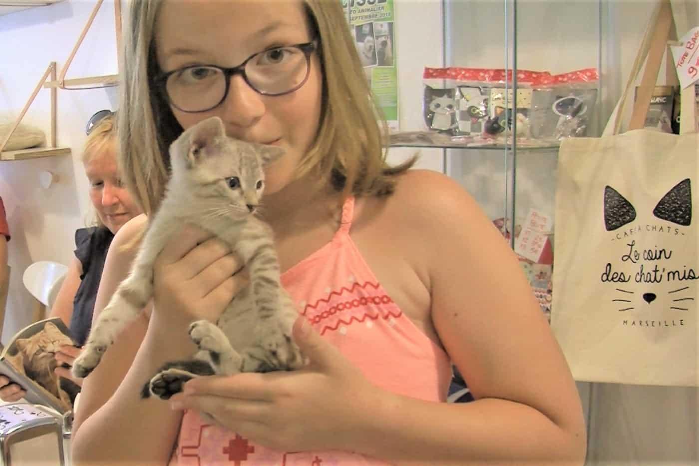 , Défilé de chatons au café des chats, Made in Marseille, Made in Marseille