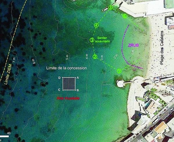 , Un musée sous-marin en projet plage des Catalans à Marseille