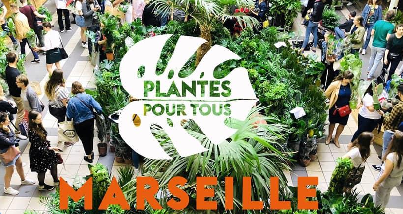 , Une grande vente de plantes vertes aux Docks Village tout le week-end