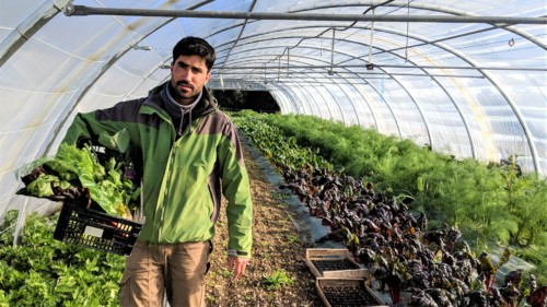 , Terre de Mars : la ville du futur sera agricole