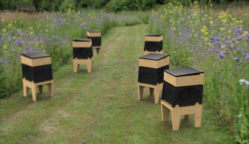 , BeeLife, la ruche connectée qui veut sauver les abeilles