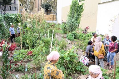, Jardin partagé Arzial : le lien social qui pousse à Saint-Mauront, Made in Marseille