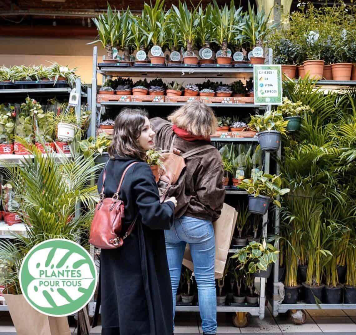 Plantes Pour Terrasse Sud Est rendez-vous ! grande vente de plantes aux voûtes de la major