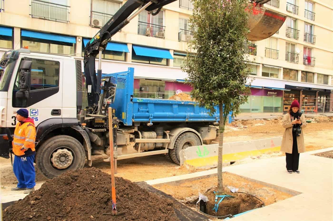 , 365 arbres en plus dans le centre-ville avant la fin de l'année, Made in Marseille, Made in Marseille