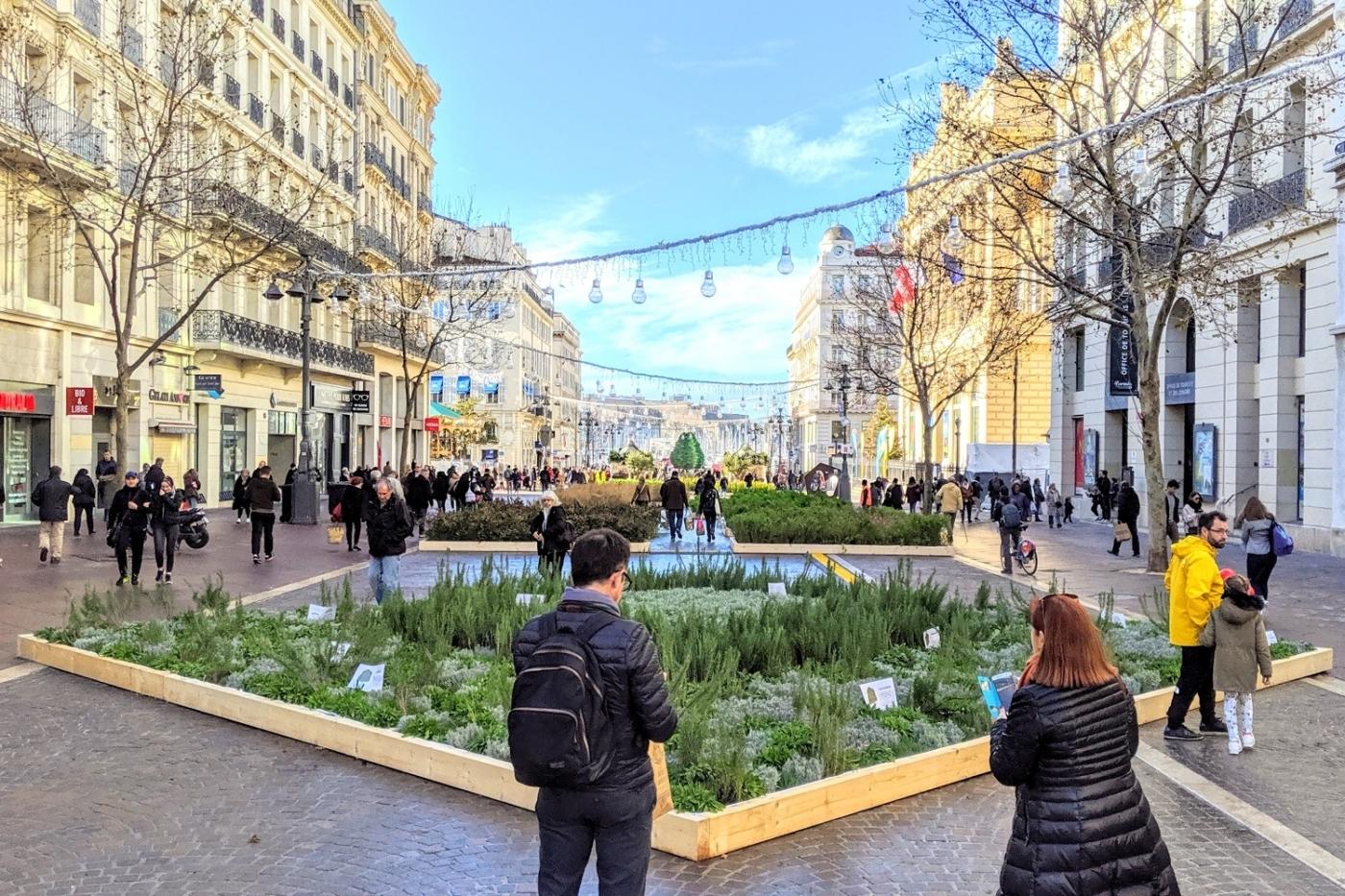 , La Canebière en fleurs : féerie de noël et ode à la nature, Made in Marseille, Made in Marseille
