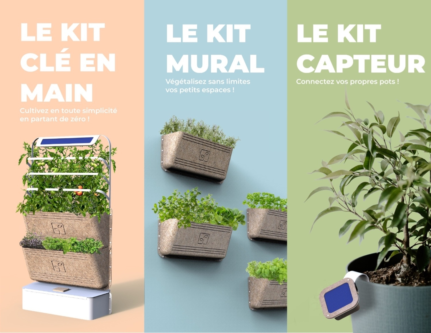 , Agrove, le potager connecté, lance sa campagne de financement, Made in Marseille, Made in Marseille