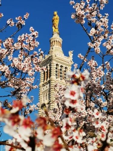 , Visite en images : vos plus belles photos de Notre-Dame de la Garde, Made in Marseille