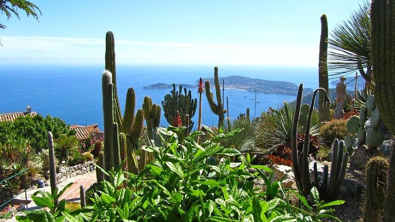 , Sélection des plus beaux jardins exotiques à visiter dans le Sud, Made in Marseille, Made in Marseille